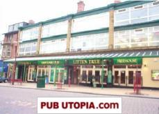 Litten Tree in Blackpool picture