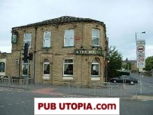 The Round Thorn in Bradford picture